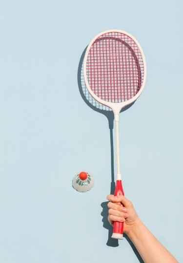 India's top badminton players